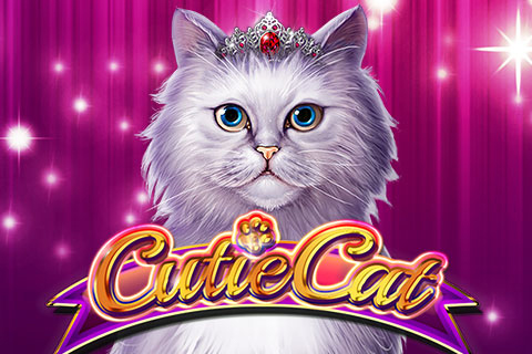cutie cat bally wulff slot teaser