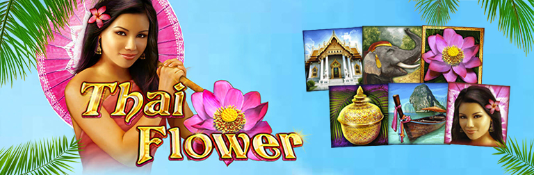 merkur slot thai flower teaser