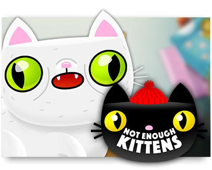 AlleCasinos.com - Not Enough Kittens Slot von Thunderkick Casinos
